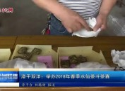 漳平双洋:举办2018年春季水仙茶斗茶赛