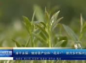 """漳平永福:做好""""花卉+""""   助力乡村振兴发展"""
