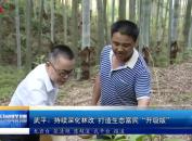 """武平:持续深化林改 打造生态富民""""升级版"""""""