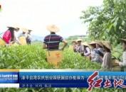 """漳平台湾农民创业园获国台办批准为""""海峡两岸青年就业创业基地"""""""