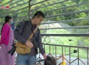 梅花山中国虎园景区: 游客盈门旅游旺
