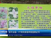 漳平永福:3个桂花新品种获国家证书