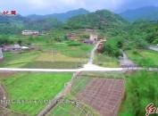 """新罗:以高标准农田项目建设为抓手为乡村振兴""""添砖加瓦"""""""