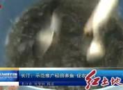 长汀:示范推广稻田养鱼 促农增收