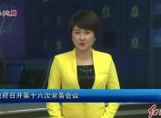 市政府召开第十六次常务会议