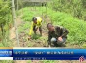 """漳平拱桥:""""党建+""""模式助力精准扶贫"""