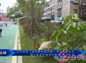 滨河绿道(挺秀桥—莲花桥)项目基本完工?预计本月中旬初步验收