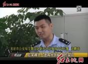 沈鹏春:平凡民警的不凡匠心