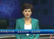 """市领导开展2018年""""龙岩企业日""""走访调研"""