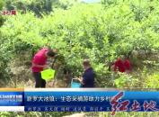 新罗大池镇:生态采摘游助力乡村振兴