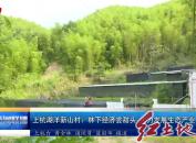 上杭湖洋新山村:林下经济尝甜头 大力发展生态产业