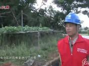 """武平供电:严阵以待防抗台风""""玛莉亚"""""""