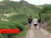 龙岩市漳平台湾农民创业园:台湾青年就业创业天地广阔 大有可为