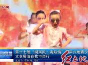 """第十七届""""闽南风·海峡情""""两岸六地青少年文艺展演在我市举行"""