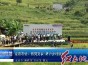 龙岩农信: 信贷支农 助力乡村振兴