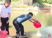 连城朋口举行2018年河道大型增殖放流活动