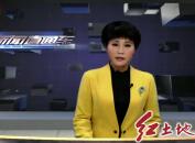 泉厦漳城市联盟路跨海特大桥预计2020年实现通车