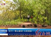 长汀:青山复绿 人民得益