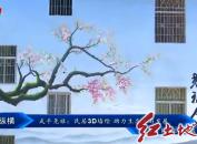 武平尧禄:民居3D墙绘 助力生态旅游发展