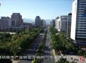 """市发改委——开展""""产业发展项目建设年""""活动"""