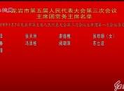 龙岩市第五届人民代表大会第三次会议主席团常务主席名单