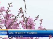 上杭:桃花朵朵开 市民踏春来