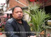 长汀古城:节后第一圩 花卉苗木热销