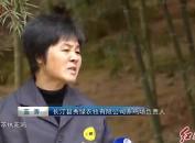 """长汀河田:凝聚群众力量 共创绿水青山""""生态财富"""""""