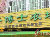 茶博士——曾国宝