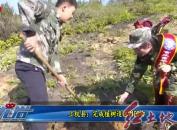 上杭縣:完成植樹造林9100畝