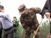 軍民攜手植綠 共建美麗家園 省領導赴長汀看望慰問參加植樹造林的駐閩部隊