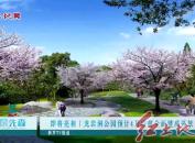 即将亮相 龙岩洞公园预计4月底前全面建成开放