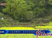 上杭县珊瑚乡:着力打造美丽宜居的新畲村