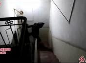 新罗警方成功捣毁一个电信网络诈骗团伙
