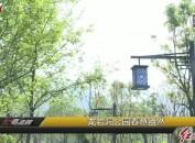龙岩洞公园春意盎然