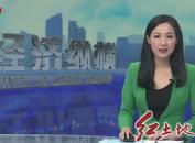 漳平:举办2019年漳平水仙茶开采节