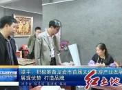 漳平:積極籌備龍巖市首屆文化旅游產業發展大會 展現優勢 打造品牌
