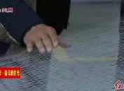 长汀:着力实施产业升级有效助推纺织服装产业实现高质量发展