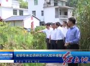 省领导来岩调研农村人居环境整治工作
