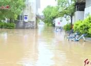新罗:强降雨造成一农贸市场停车场被淹 现场转移车辆200余部