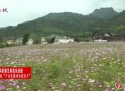 新羅區江山鎮山塘村兵工廠文化廣場提升改造工程有序推進