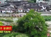 新罗东肖后田村:深耕绿色产业 助力乡村振兴