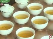 漳平:举办2019年漳平市春季茶王赛