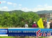 新羅大池北溪村:首屆雙華李采摘節舉行 慶豐收 促增收