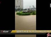 强降雨来袭 我市部分地区积水严重