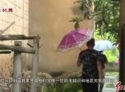 新罗龙门:积极应对强降雨 全力做好防汛工作
