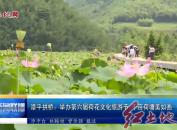 漳平拱桥:举办第六届荷花文化旅游节 千亩荷塘美如画