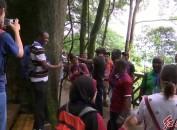 2019年发展中国家履行《联合国森林文书》及森林可持续经营官员研修班学员一行到拟建龙岩世界地质公园考察调研