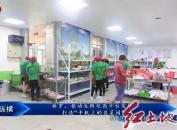 """新罗:推动生鲜电商平台发展打造""""手机上的韭菜园"""""""