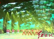 礼赞新中国 奋进新龙岩 龙岩市庆祝中华人民共和国成立70周年文艺晚会举行